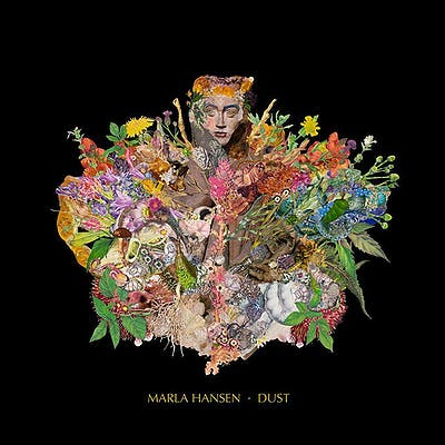 image for Gorgeous Folk Pop from Germany for Fans of Alexi Murdoch. - Marla Hansen: One Steps Up