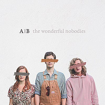 image for Stunning Roots Pop Debut. - The Wonderful Nobodies: Hallelujah Anyhow