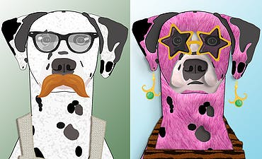 image for Dalmatian Nation - A Collection of Dog Portraits on Open Sea and Singular