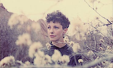 image for Dream Pop for a Lonely Heart. - Esmé Patterson: Light In Your Window