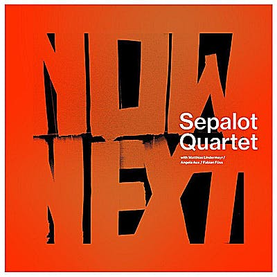 image for Modern Electronic Jazz Fusion from Germany. - Sepalot: Ride In Joy